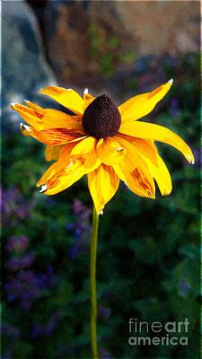 Photograph - Fading Golden Beauty Garden Art By Omaste Witkowski by Omaste Witkowski