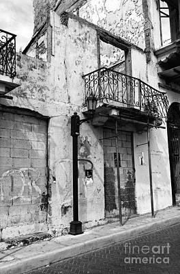 Photograph - Fading In Casco Viejo Mono by John Rizzuto