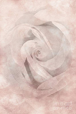 Moody Trees - Fading Rose 1 by Kaye Menner by Kaye Menner