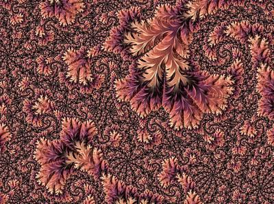 Digital Art - Faerie Forest Floor Ill by Susan Maxwell Schmidt