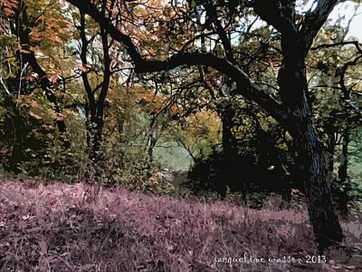 Photograph - Faerie Grove by Jacqueline  DiAnne Wasson