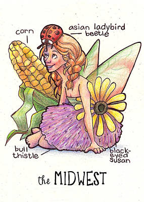 Ladybug Drawing - Fairies Of The Us The Midwest by Emily Martin