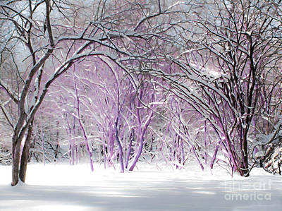 Photograph - Fairies Winter Wonderland by Barbara McMahon