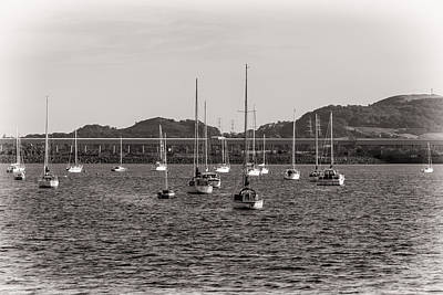 Photograph - Fairlie Yachts by Fiona Messenger