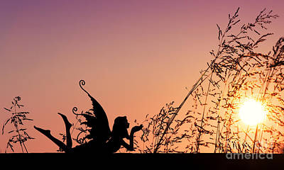 Photograph - Fairy At The Bottom Of The Garden by Tim Gainey