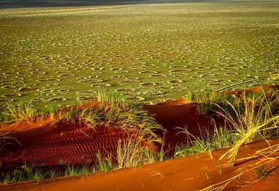 Photograph - Fairy Circles by Gregory Daley  PPSA