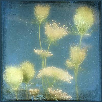 Fairy Dusted Art Print