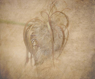 Seedhead Digital Art - Fairy Explosion by Michelle Ayn Potter