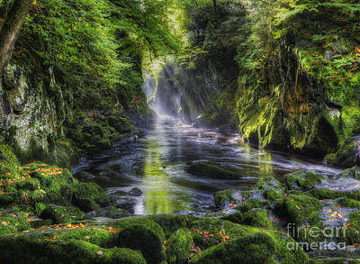 Fairy Glen Art Print