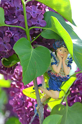 Photograph - Fairy Hiding Under A Leaf Woodland Fairies by Linda Rae Cuthbertson