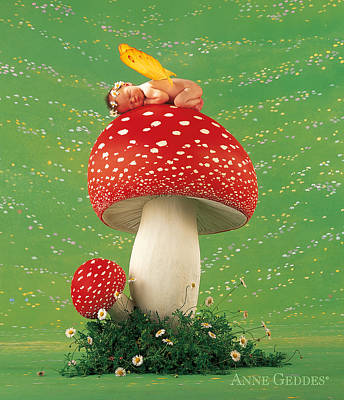 Floral Fine Art Photograph - Fairy On Toadstool by Anne Geddes