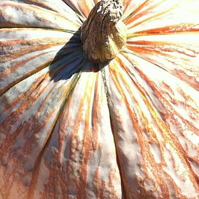 Fairy Tale Pumpkin Art Print by Denyse Duhaime