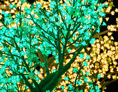 Photograph - Fairy Tree by Nicholas Blackwell