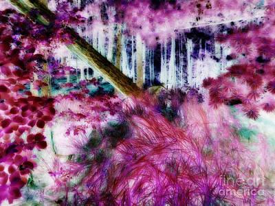 Art Print featuring the photograph Fairy Tropicolor by Jamie Lynn