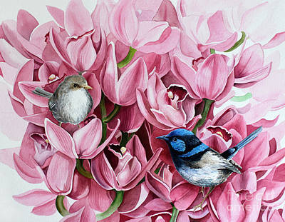 Fairy Wrens And Orchids Art Print by Debbie Hart