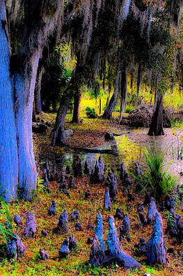 Photograph - Fairyland Of Gnomes by DigiArt Diaries by Vicky B Fuller
