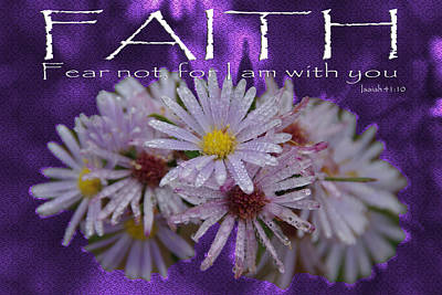 Photograph - Faith Fear Not Isaiah by Robyn Stacey