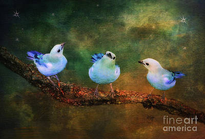 Birds Rights Managed Images - Faith Hope and Charity Royalty-Free Image by Lois Bryan