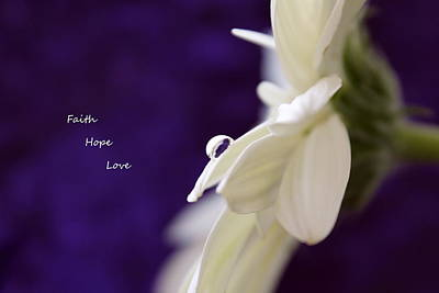 White Daisy Photograph - Faith Hope Love by Krissy Katsimbras