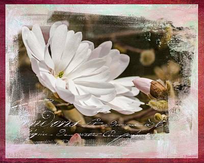 Faith Love And Hope - Flower Art Art Print by Jordan Blackstone