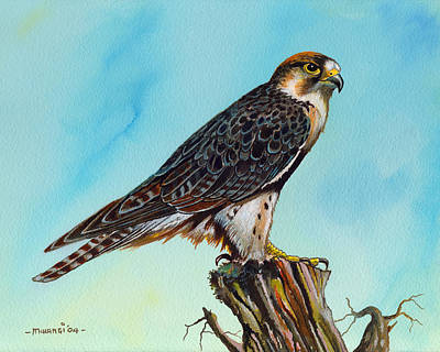 Landmarks Painting Royalty Free Images - Falcon on stump Royalty-Free Image by Anthony Mwangi