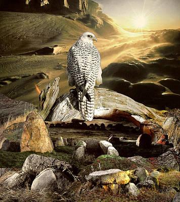 Megalith Mixed Media - Falcon's Eye by Yvonne Pfeifer