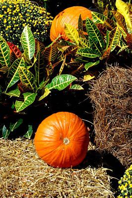 Photograph - Fall 2 by David Weeks