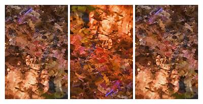 Photograph - Fall Abstract by Alice Gipson