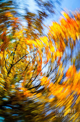 Photograph - Fall Abstract Along The Maumee River by Michael Arend