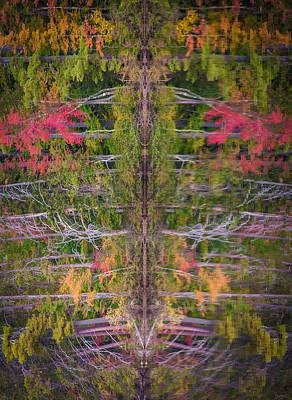 Photograph - Fall Abstract by Karen Stephenson