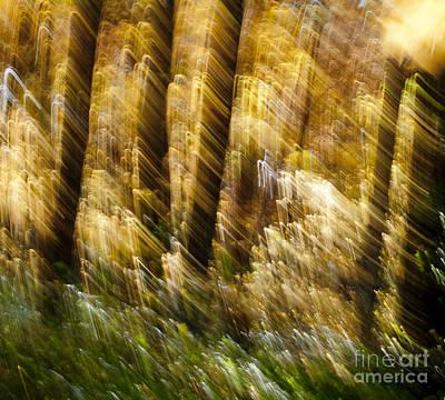 Fall Abstract Art Print by Steven Ralser