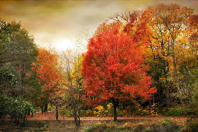 Red Leaf Digital Art - Fall Aflame by Jessica Jenney
