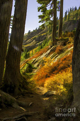 Fall Afternoon At Mount Baker Art Print by Frank Pali