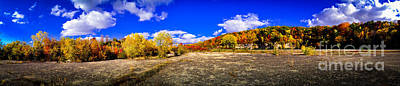 Photograph - Fall All Around by Mark David Zahn Photography