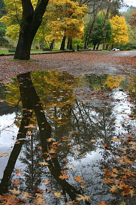 Art Print featuring the photograph Fall All The Way by Marie Neder