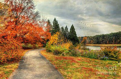 Autumn Scenes Photograph - Fall Along Lake Nevin by Darren Fisher