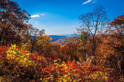 Photograph - Fall Along The Blue Ridge by Lynn Bauer