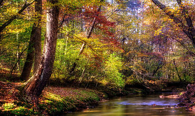 Photograph - Fall Along The Creek Bank by Greg Mimbs
