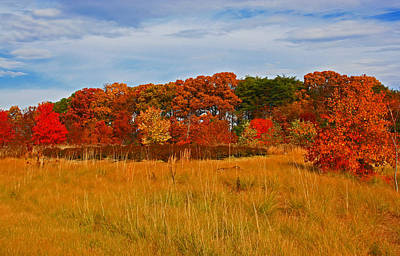 Art Print featuring the photograph Fall Along The Highway by Andy Lawless