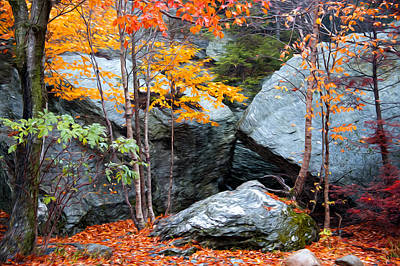 Photograph - Fall Among The Rocks by Bill Howard