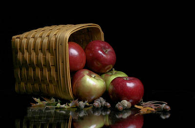 Photograph - Fall Apples by David and Carol Kelly