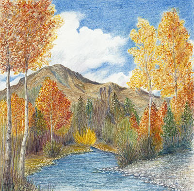 Beach Landscape Drawing - Fall Aspens by Phyllis Howard