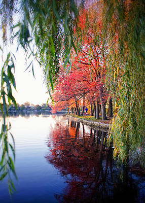 Fall At Argyle Lake Art Print