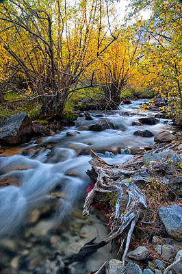 Scenic River Photograph - Fall At Big Pine Creek by Cat Connor