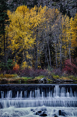 Photograph - Fall At Jolanda Lake Spillway by Robert Woodward