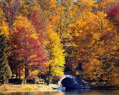Photograph - Fall At Keen Lake by Maureen Cunningham