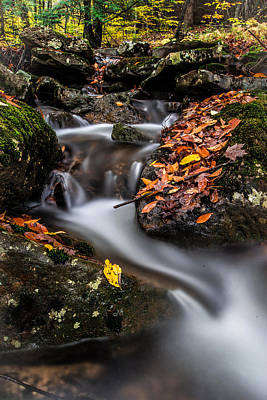Photograph - Fall At Millstone by Anthony Thomas