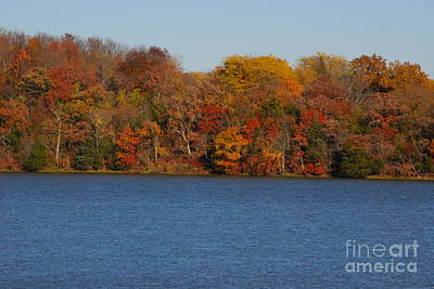 Photograph - Fall At Olathe Lake by Mark McReynolds