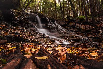 Photograph - Fall At Rapp Run Falls by Anthony Thomas