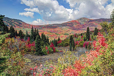 Red Skys Photograph - Fall At Snowbasin Utah by James Steele